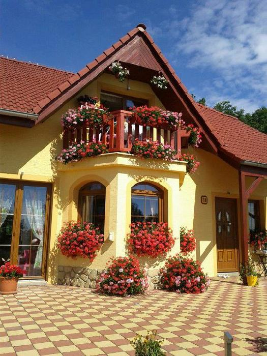 balkonoveKvitka
